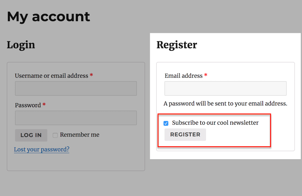 register frontend