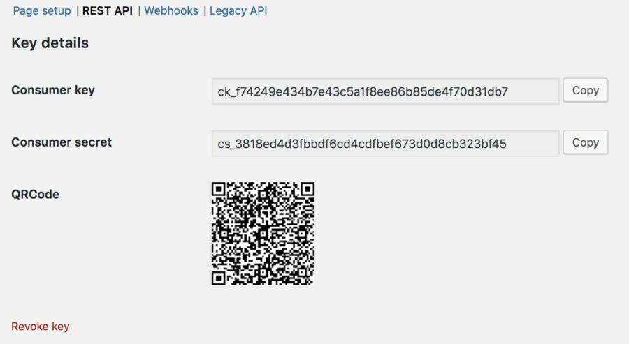 REST API key generated